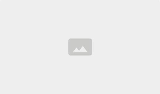 /index.php/de/beratung-service/dachlexikon/aeusserer-blitzschutz